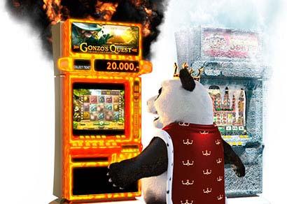 Royal panda hot cold