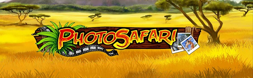 photo safari playn go gra